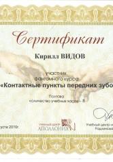 Видов Кирилл Сергеевич