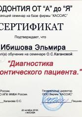 Ибишова Эльмира Магамедовна