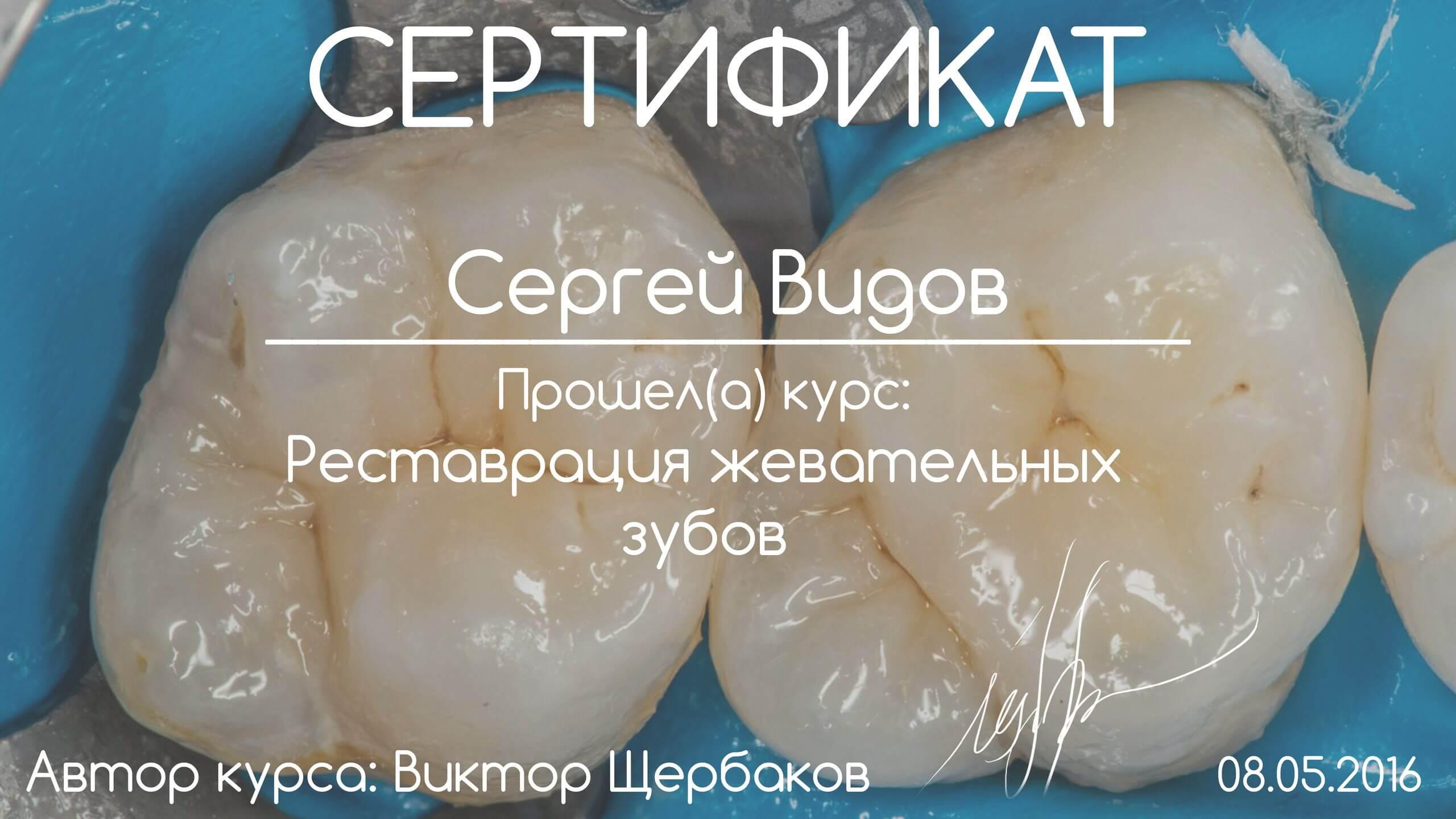 vid-serghei-0496
